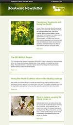 Newsletter snapshot
