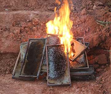 burning-hive