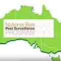 bee-pest-surveillance-program