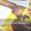 honey-bee-biosecurity-thumbnail
